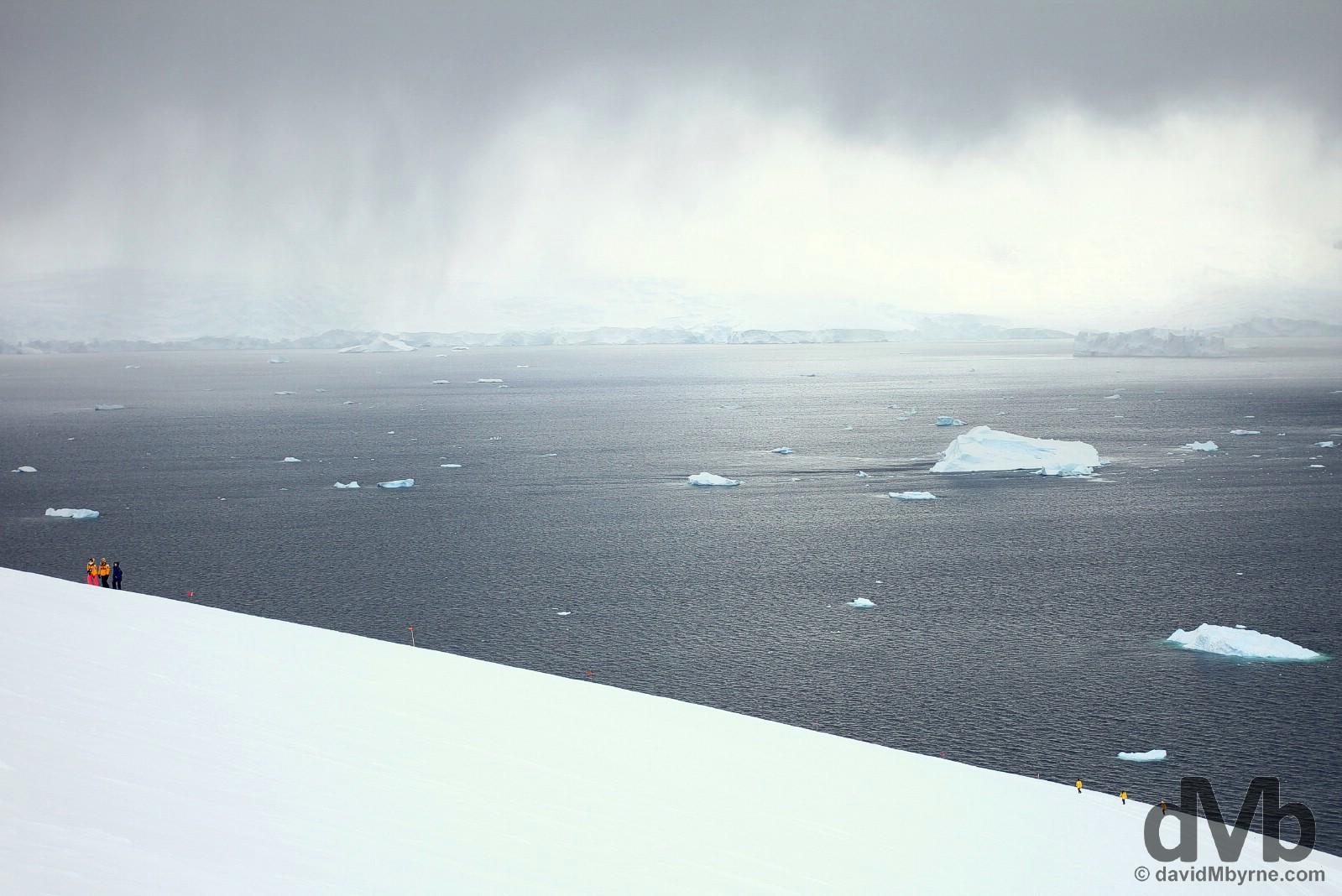 Neko Harbour, Antarctic Peninsula. November 30, 2015.