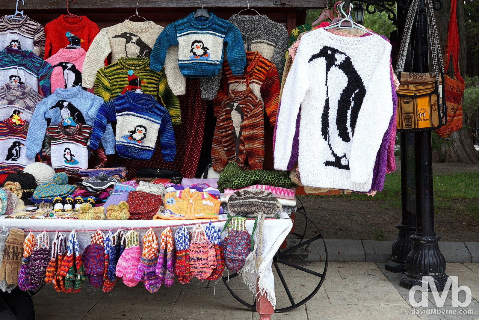 For sale off Plaza Munoz Gamero in Punta Arenas, Chile. November 10, 2015.