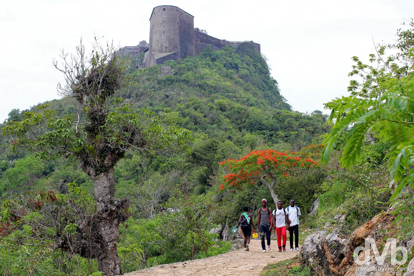 On the path to the UNESCO-listed Citadelle Laferrière in northern Haiti, Hispaniola, Greater Antilles. May 22, 2015.