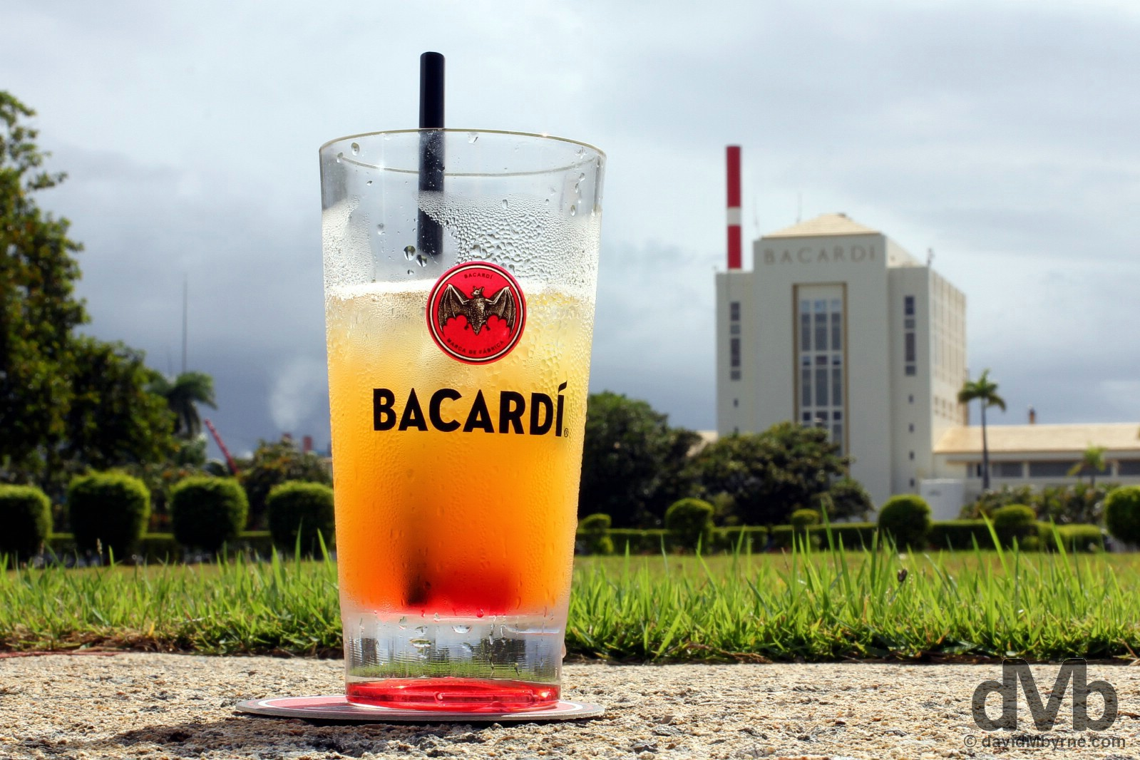 With the compliments of Bacardi. At Casa Bacardi, a.k.a. the Cathedral of Rum. Cataño, Puerto Rico, Great Antilles. June 2, 2015.