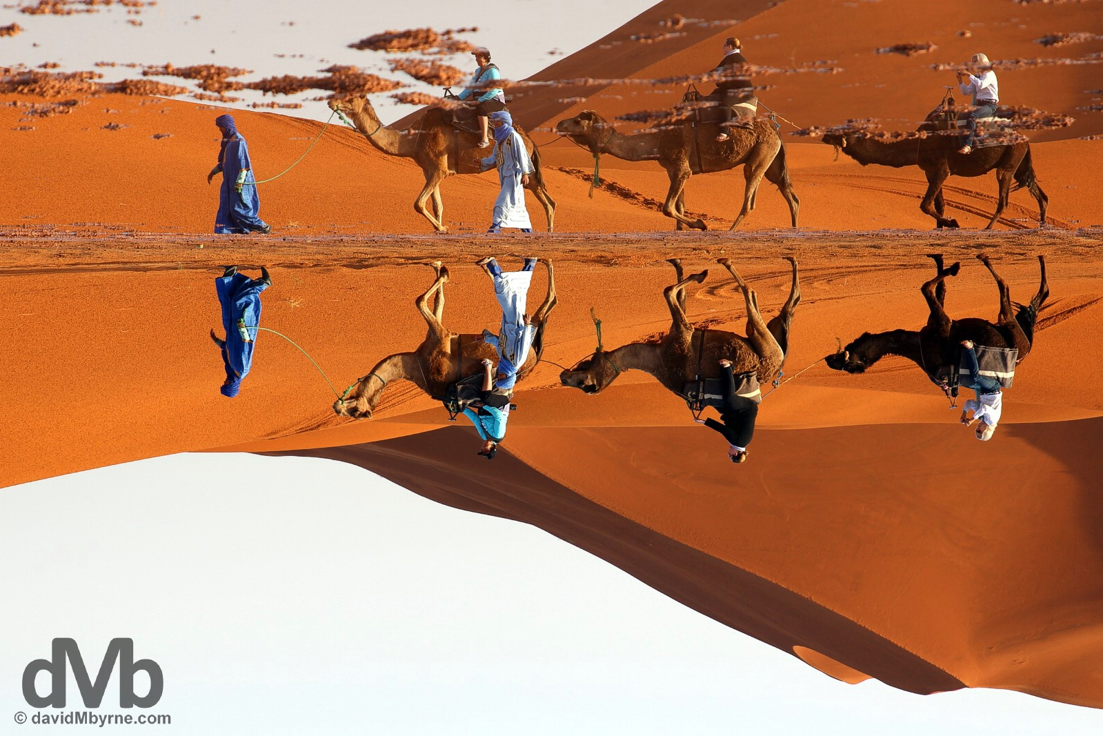 An inverted camel train reflection in the desert of Erg Chebbi, southeastern Morocco. May 19, 2014.