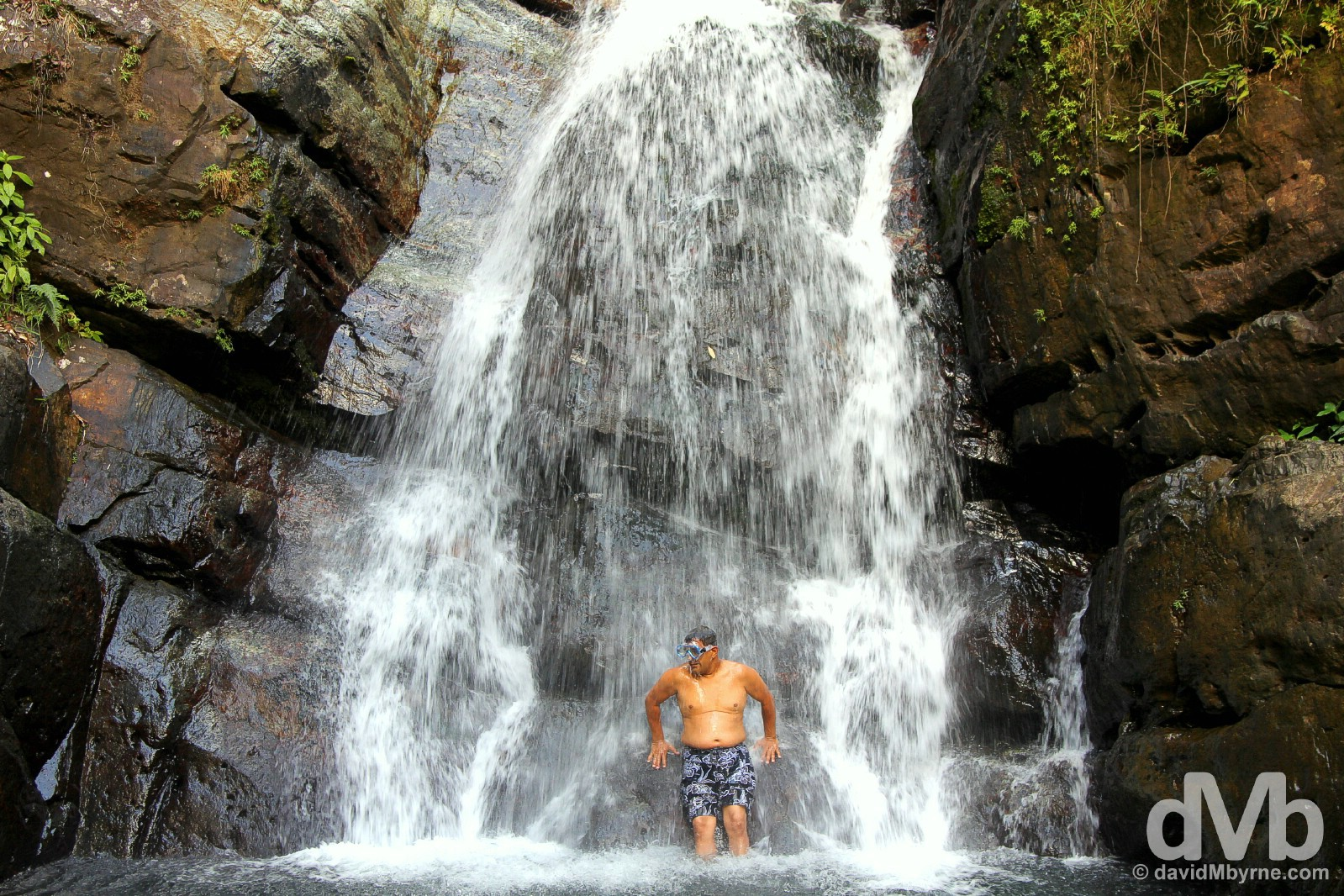 Cooling down in La Mina Falls of El Yunque National Forest, eastern Puerto Rico, Greater Antilles. June 5, 2015.