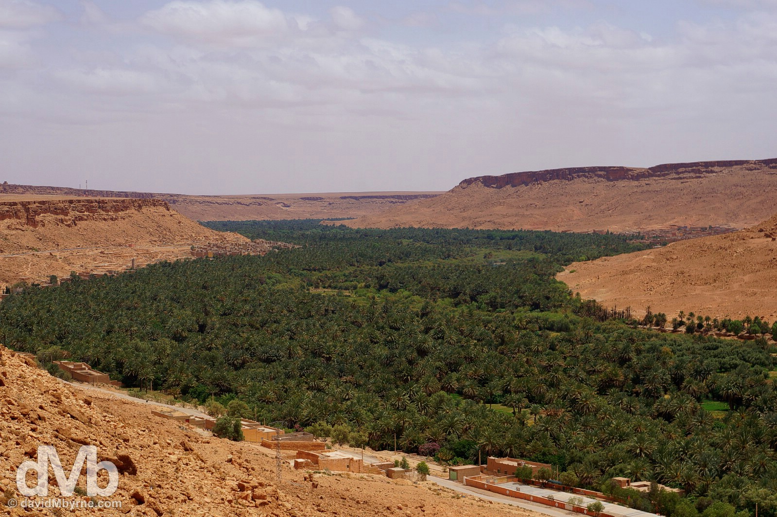 A vast palmarie resting in a lush river valley as seen from the N13 between Er Rachidia and Merzouga, southeastern Morocco. May 18, 2014.