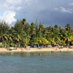Playa Jobos, Isabela, Puerto Rico, Greater Antilles. June 3, 2015.