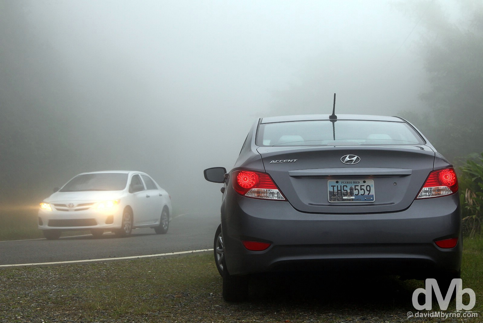 Hire car (& mist) on Ruta Panoramica, central Puerto Rico, Greater Antilles. June 4, 2015.
