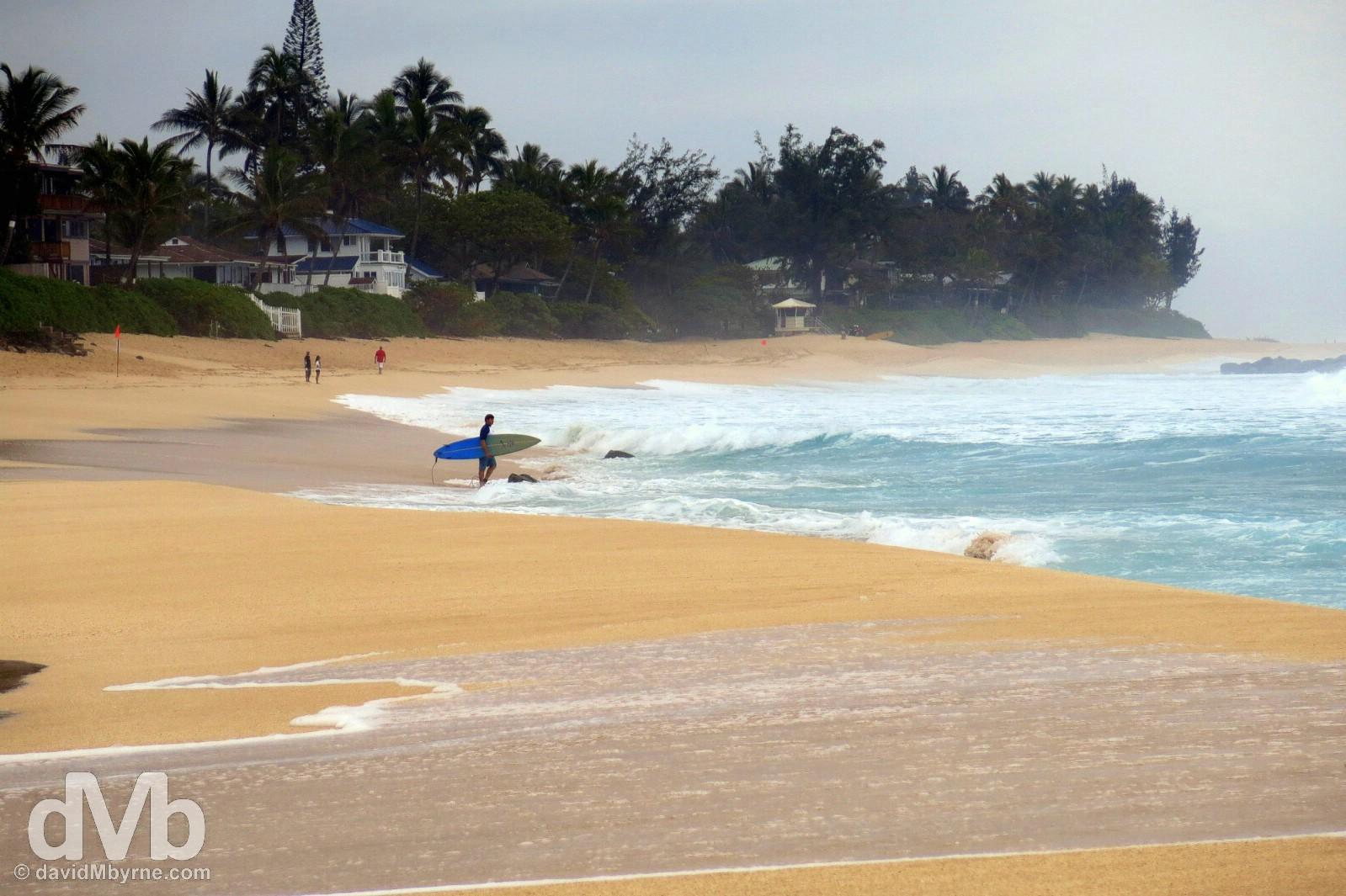 Ehukai Beach Park, Pupukea, North Shore, Oahu, Hawaii, USA. March 10, 2013.
