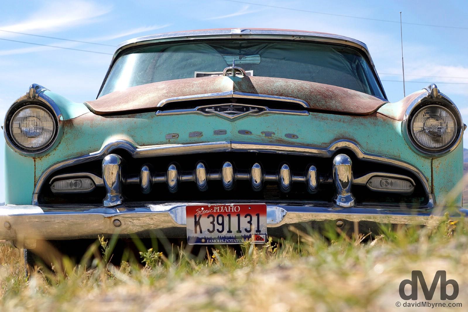 Abandoned 1955 Desoto in Montpelier, Idaho, USA. September 6, 2016.