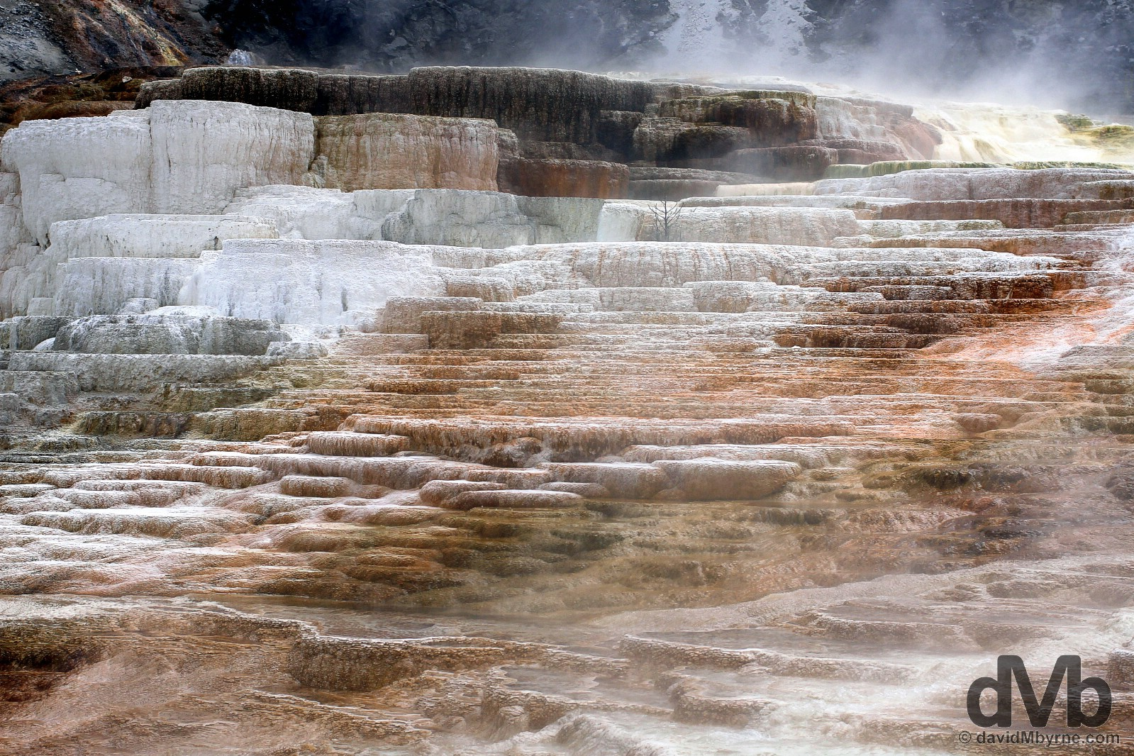 The terraces of Mammoth Springs, Mammoth Country, Yellowstone National Park, Wyoming, USA. September 4, 2016.