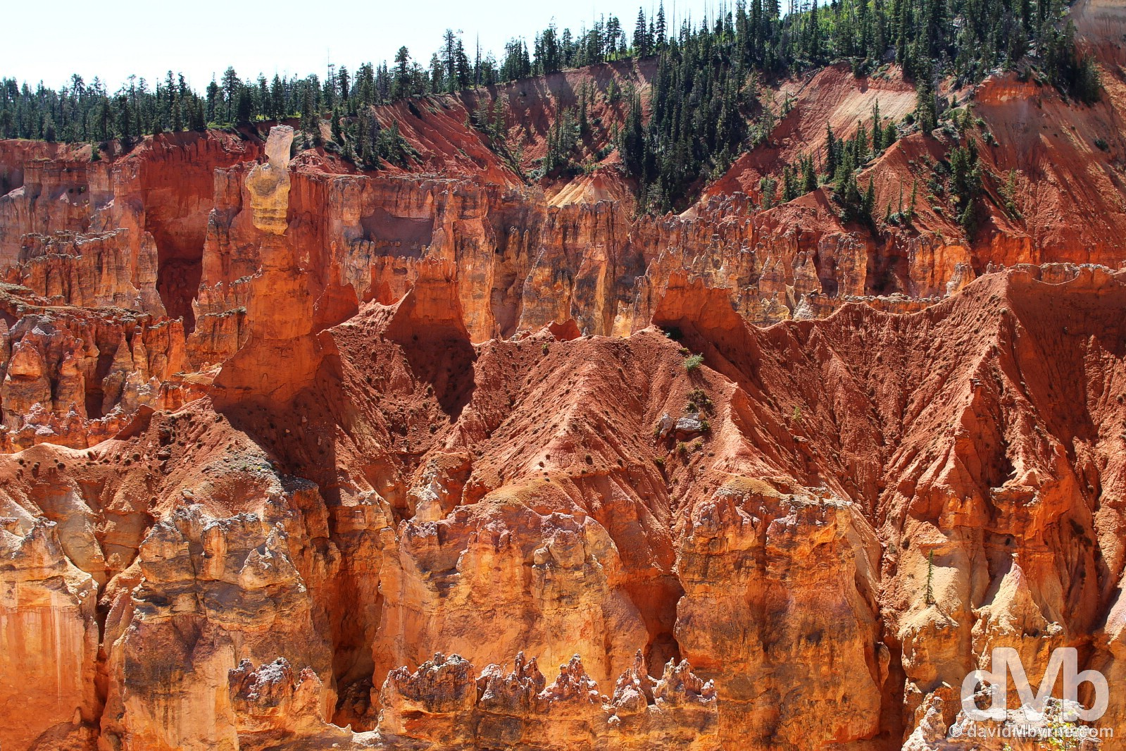 The brilliant red of Aqua Canyon of Bryce Canyon National Park, southern Utah, USA. September 8, 2016.