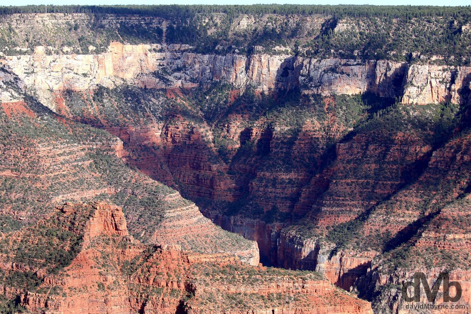 Roaring Springs Canyon, Grand Canyon National Park North Rim, Arizona, USA. September 9, 2016.