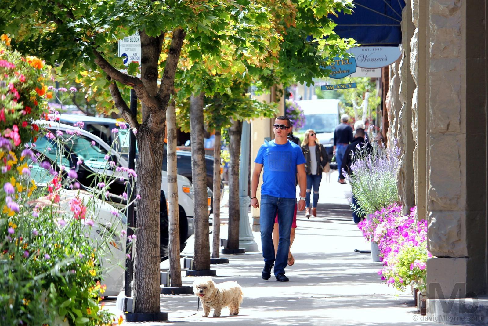 Aspen, Colorado, USA. September 13, 2016.