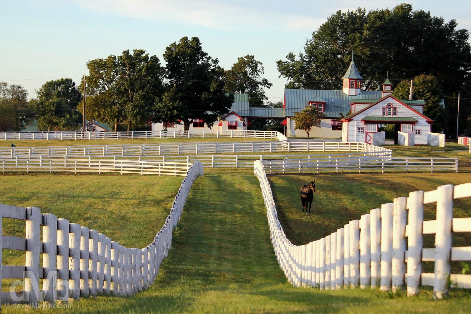 Late afternoon shadows at Calumet Farm in Lexington, Kentucky, USA. September 26, 2016.