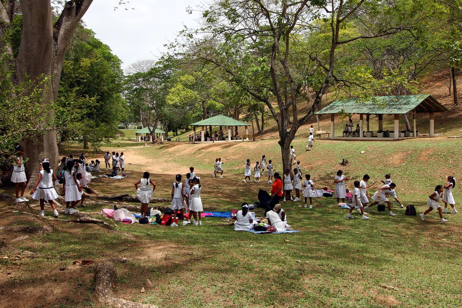 Botanical Gardens, Port of Spain Trinidad & Tobago - Worldwide ...