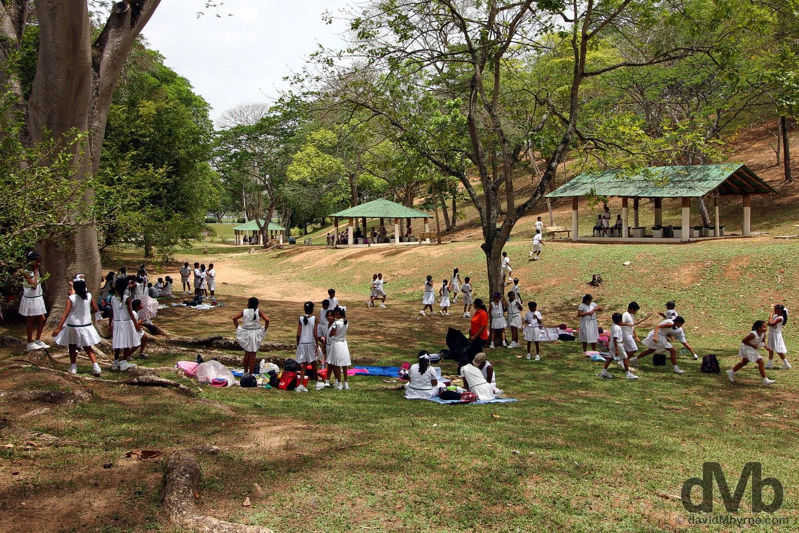 Botanical Gardens, Port of Spain, Trinidad & Tobago. June 17, 2015.