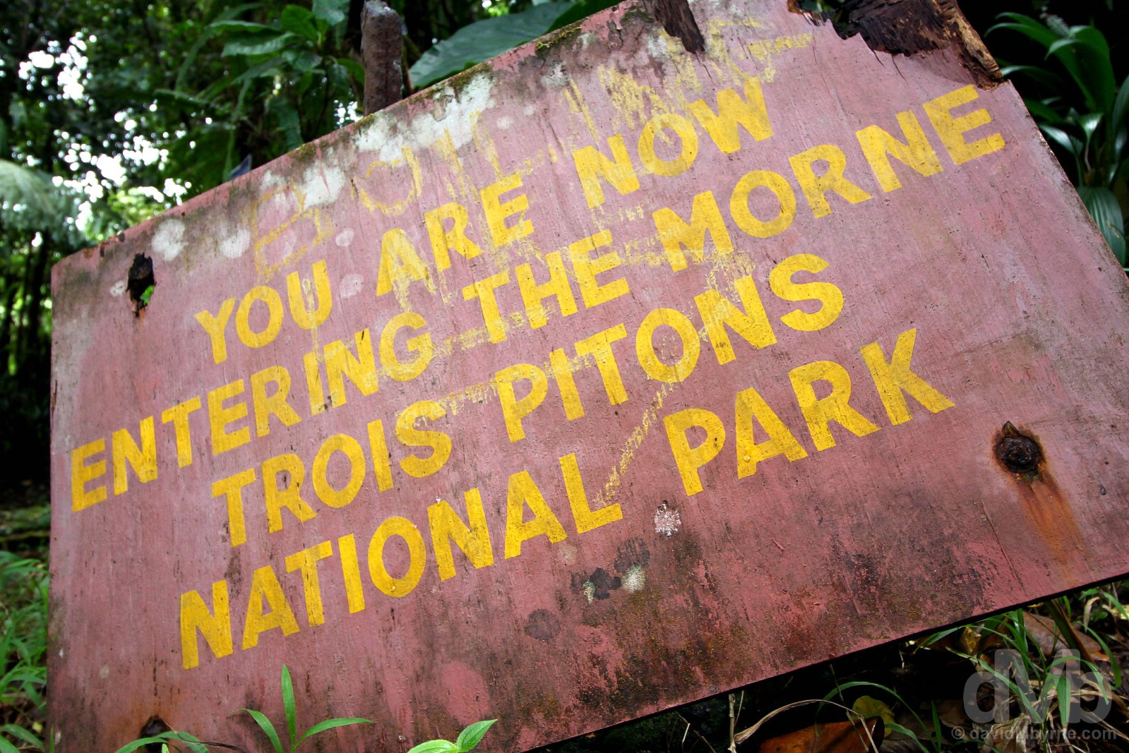 Morne Trois Pitons National Park, Dominica, Lesser Antilles. June 11, 2015.