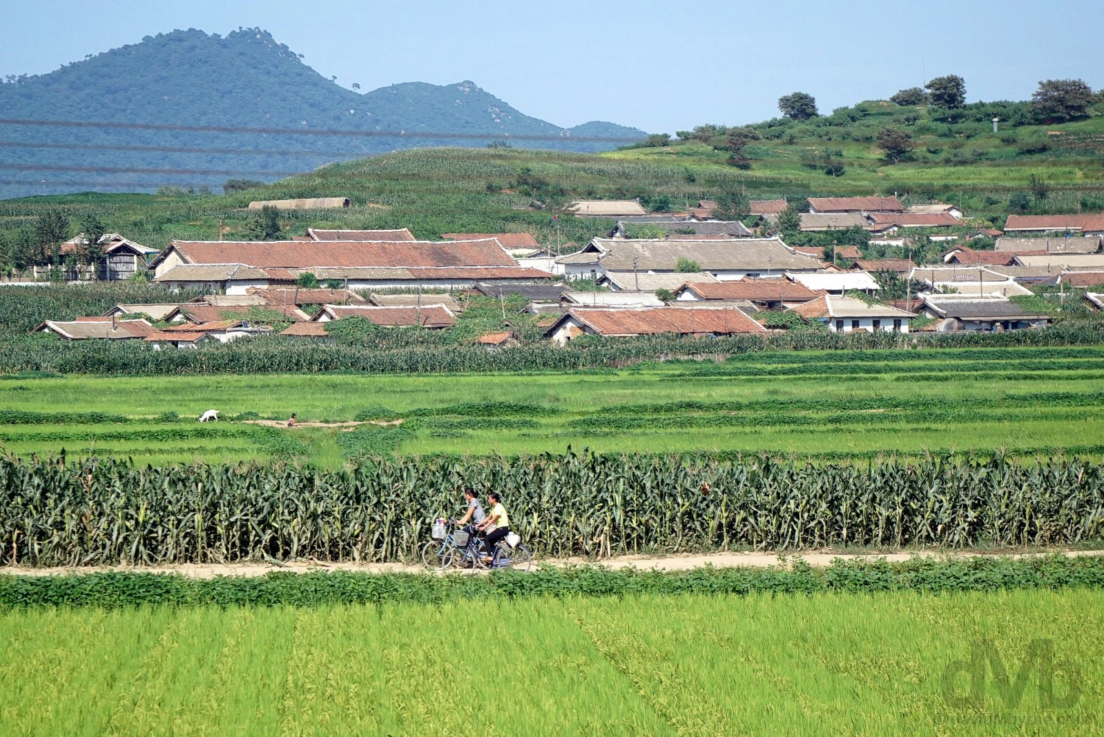 The North Korean countryside as seen from the daily 95 train from Dandong, China to Pyongyang, North Korea. August 14, 2017.