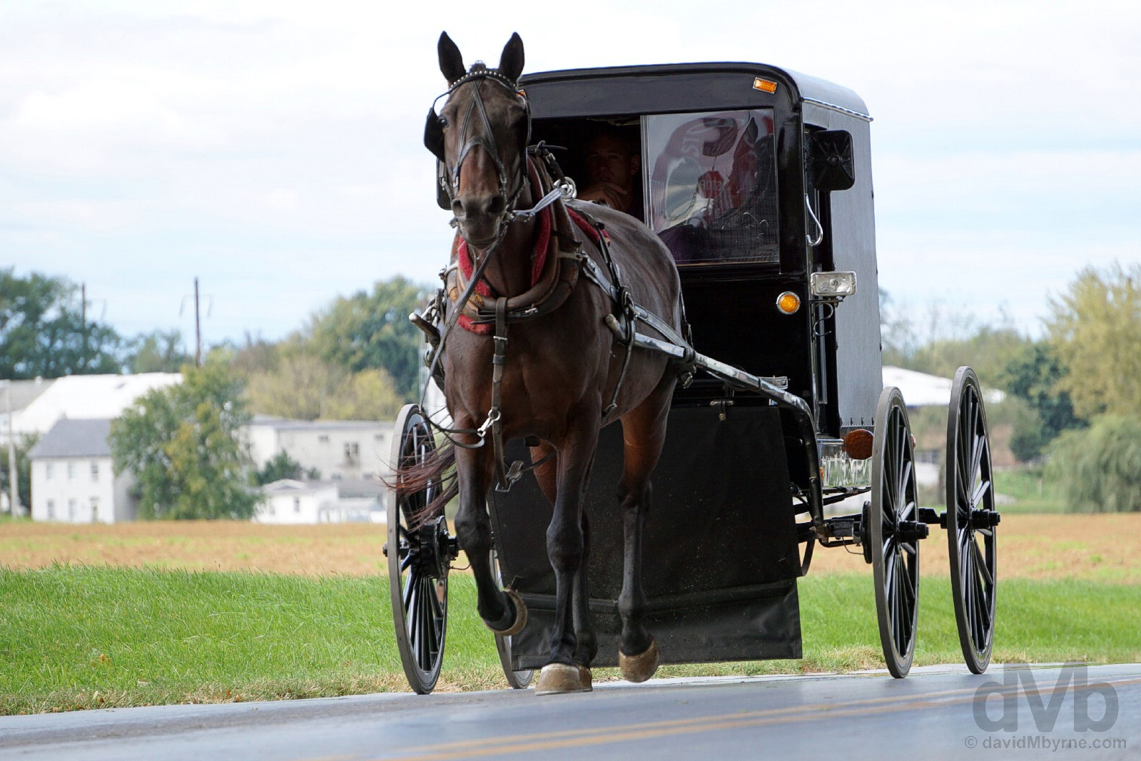 An Amish buggy on the roads outside Bird in Hand, Lancaster County, Pennsylvania, USA. September 30, 2017.