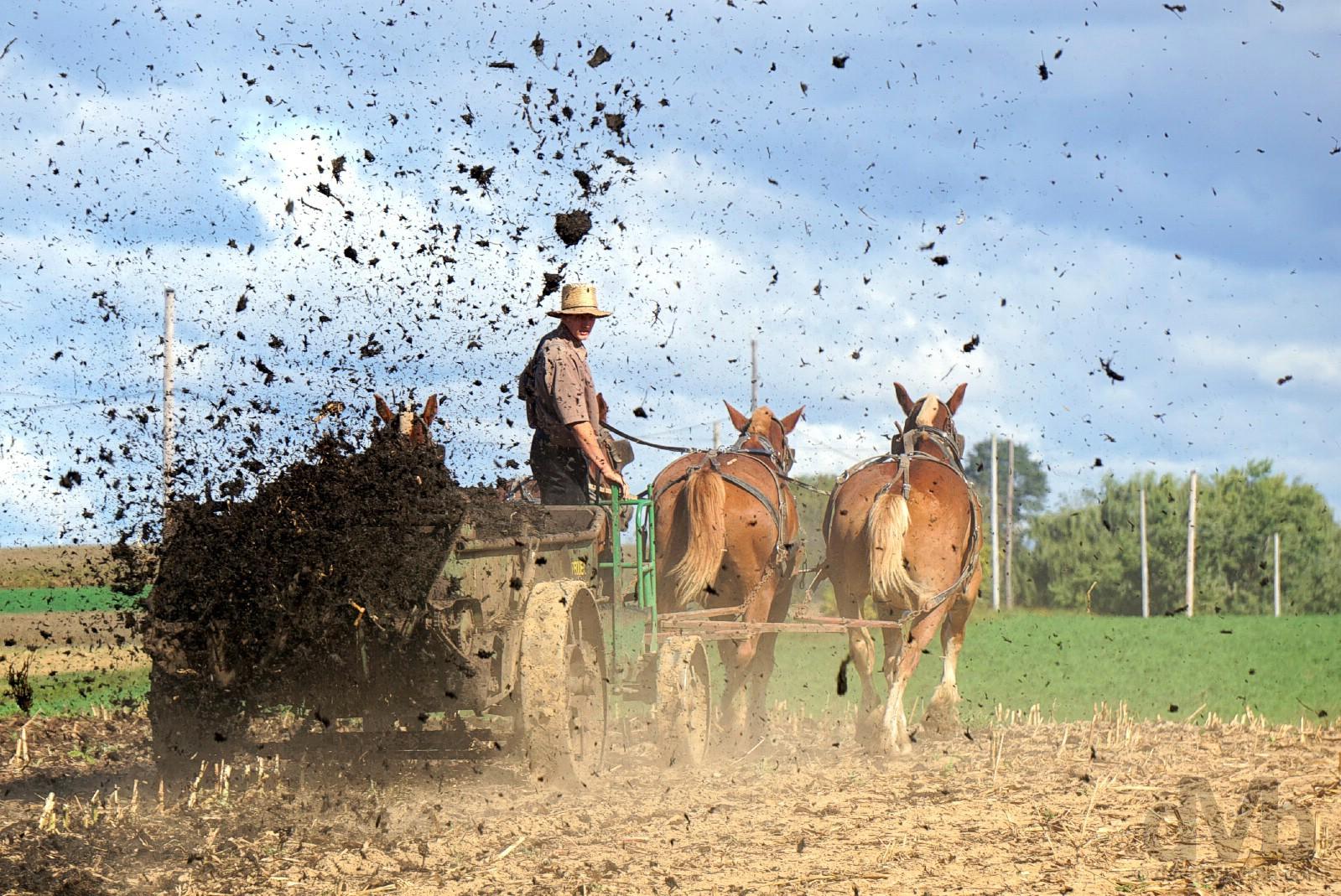 Amish farming outside Bird in Hand, Lancaster County, Pennsylvania, USA. September 30, 2017.
